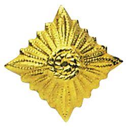 Odznak hodnostní NVA hvìzda GOLD - ZLATÁ