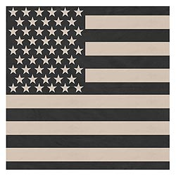Šátek 68 x 68 cm JUMBO vlajka USA SUBDUED