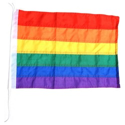 Vlajka DUHOVÁ Rainbow LGBT 46x36cm
