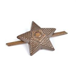 Odznak AÈR hodnost hvìzda bronzová velká